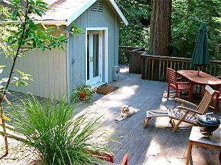 1 bedroom Cottage with Deck in Guerneville - Guerneville vacation rentals