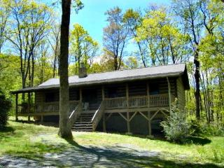 Adorable Cabin with Internet Access and A/C - Blowing Rock vacation rentals