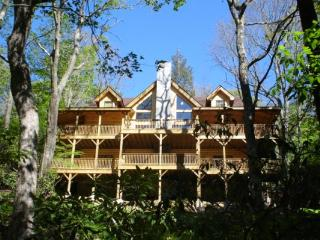 Fire & Ice Location: Appalachian Ski Mtn / Between Boone & Blowing Rock - Boone vacation rentals