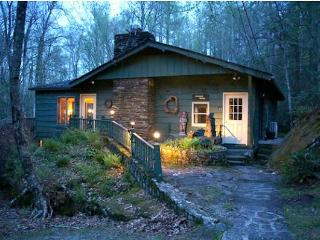 Cozy 3 bedroom Cottage in Boone - Boone vacation rentals