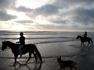 Lake views, Easy beach access, Horses+ welcome - Long Beach vacation rentals