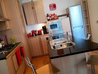 Bright Condo with Internet Access and Central Heating - Belfast vacation rentals