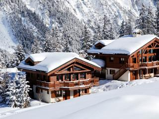 Bright 7 bedroom House in Saint Bon Tarentaise - Saint Bon Tarentaise vacation rentals