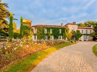 Chateau des Nuits Blanches Estate - Larressingle vacation rentals