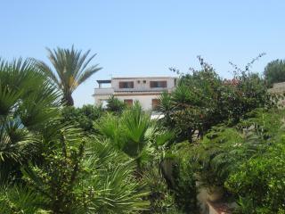 Il canneto IL FARO - Marinella di Selinunte vacation rentals