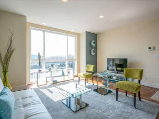 Executive Living in Modern SOMA - San Francisco vacation rentals