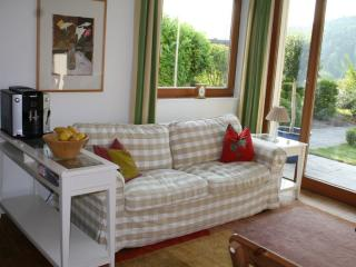 Nice Condo with Deck and Internet Access - Gengenbach vacation rentals