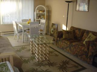 1 bedroom Condo with Internet Access in Mantoloking - Mantoloking vacation rentals