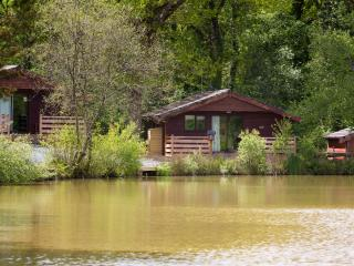 Cozy 2 bedroom Lodge in Holsworthy with Deck - Holsworthy vacation rentals