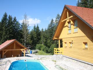Villa Kelt, mountain retreat, Alps - Zgornje Jezersko vacation rentals