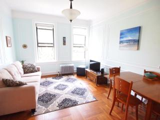 Bright 1 bedroom Brooklyn Apartment with Internet Access - Brooklyn vacation rentals