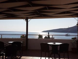 Nice 2 bedroom Condo in Livadia with Internet Access - Livadia vacation rentals