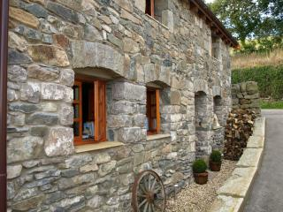 Lovely Cottage with Toaster and Washing Machine - Llannefydd vacation rentals