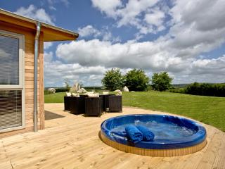 9 Horizon View located in Dobwalls, Cornwall - Doublebois vacation rentals