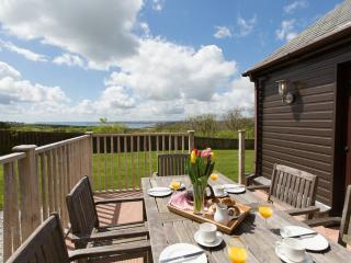 Premier Lodge, Trenython Manor located in Par, Cornwall - Par vacation rentals