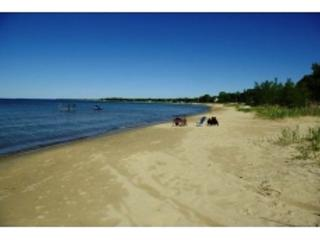 Relaxing on the beach - Caseville vacation rentals