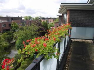 Private floor, bathroom + breakf +free wifi+free P - Rijswijk vacation rentals
