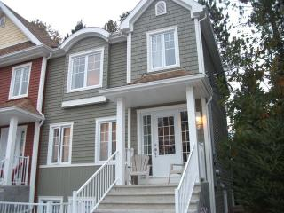 Fabulous 3 Bedroom Condo 7 minutes from the Hill - Mont Tremblant vacation rentals