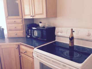 The Antelope Suite, Downtown Main St. One Bedroom - Buffalo vacation rentals