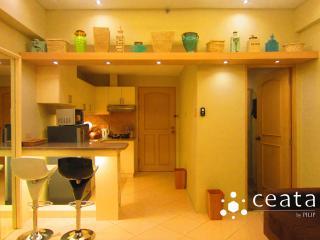 MAKATI STUDIO TYPE: PASEO PARKVIEW SUITES - Makati vacation rentals