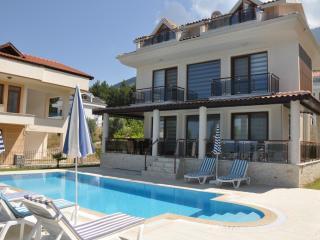 Panaroma  Villa - Oludeniz vacation rentals
