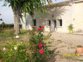 Nice Gite with Internet Access and A/C - Saint-Sulpice-de-Faleyrens vacation rentals