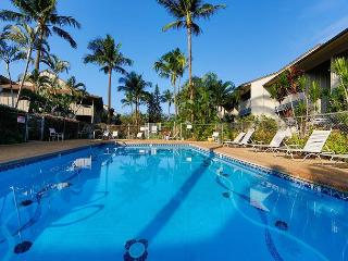 Kihei Bay Vista #C-106 Best Location, Garden View, Sleeps 4, Great Rates! - Kihei vacation rentals