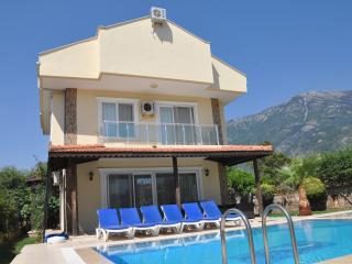 Mountain view villa - Oludeniz vacation rentals