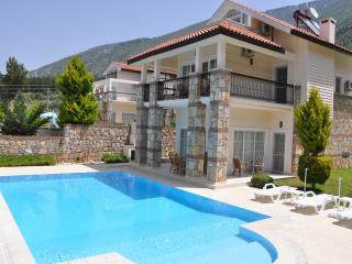 Ashella  Villa - Oludeniz vacation rentals