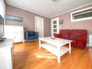 50 m from  Concha Beach + PARKING (optional)+WIFI - San Sebastian - Donostia vacation rentals