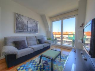 Zabaleta - San Sebastian - Donostia vacation rentals