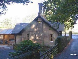 1 bedroom House with Internet Access in Newbridge - Newbridge vacation rentals