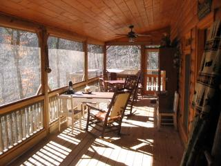 Lake Hideaway lakeside cabin - Ellijay vacation rentals
