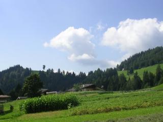 Comodo panoramico tranquillo montagna piano terra - Castelfondo vacation rentals