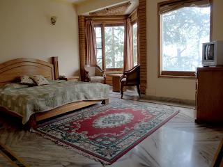 Bright Lodge with Porch and Television in Naldehra - Naldehra vacation rentals