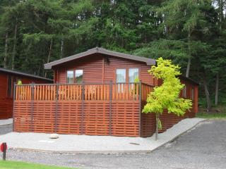 Comfortable Lodge with Deck and Satellite Or Cable TV - Bridgnorth vacation rentals