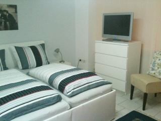 Nice Condo with Internet Access and Towels Provided - Kassel vacation rentals