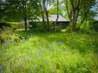A lovely secluded 1 bed cottage in rural Wiltshire - Pewsey vacation rentals