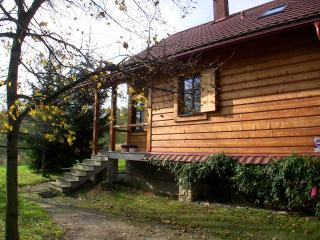 Nice Chalet with Internet Access and Outdoor Dining Area - Zelkow vacation rentals