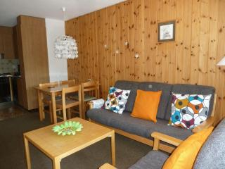 cosy appartment in Zermatt area (Täsch) - Täsch vacation rentals