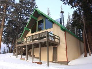 Ski in/Ski out Slope side cabin - Chalet #16 - Mammoth Lakes vacation rentals