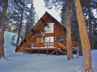 Ski in/Ski out  Slope side cabin - Chalet #4 - Mammoth Lakes vacation rentals
