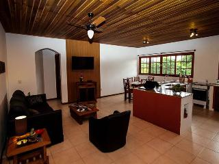 Nice Condo with Internet Access and Garden - Campeche vacation rentals