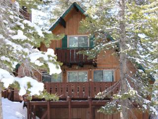 Ski-In Ski-Out Slope Side Cabin - Chalet#21 - Mammoth Lakes vacation rentals