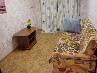 Cozy 2 bedroom Condo in Novosibirsk - Novosibirsk vacation rentals