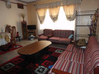 Nice Condo with Internet Access and Garden - Nairobi vacation rentals