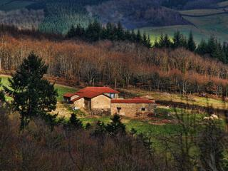 Gite le Fournil du Bernachon - Saint-Point vacation rentals