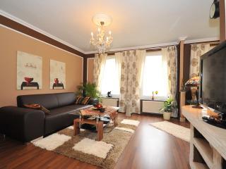 Deluxe Apartments Bremen -  App. Typ B - Bremen vacation rentals