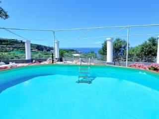 VILLA VETARA - SORRENTO PENINSULA - Sorrento - Agerola vacation rentals