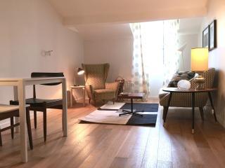 2P sous les toits centre ville - Nice vacation rentals